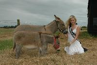 Miss New  Zealand 2006 meeting our donks